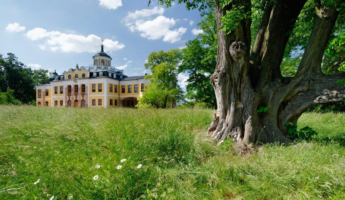 Schloss Belvedere liegt etwas außerhalb der Stadt im Grünen © Mick Palarczyk / Thüringer Tourismus GmbH