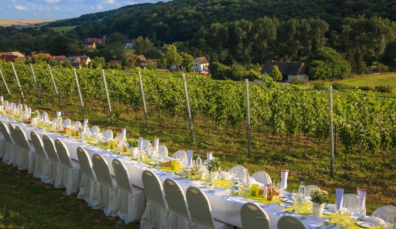 """Das """"Tafeln im Dachsberg"""" ist das alljährliche Highlight auf dem Weingut Zahn © Melf Mäder / CMR"""