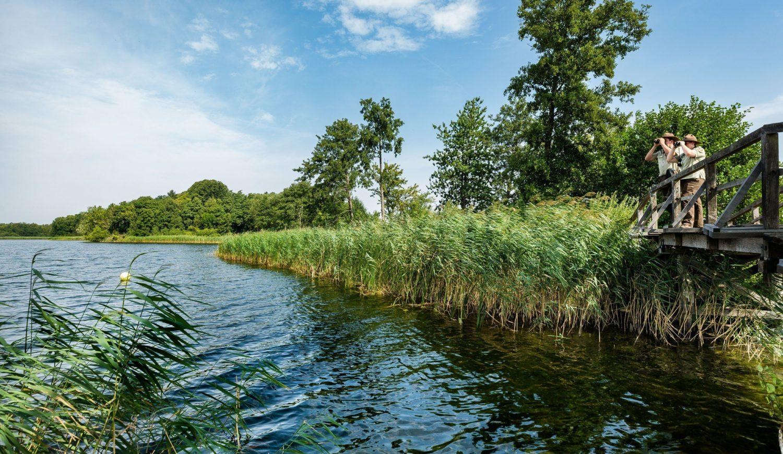 Das Biosphärenreservat Schaalsee im Westen Mecklenburg-Vorpommerns © TMV/Kirchgessner