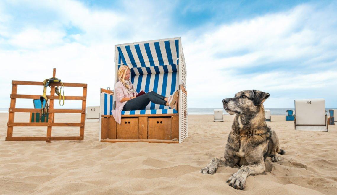 In allen Ostseebädern gibt es Hundestrände - und an einigen Hundestränden gibt's für Herrchen und Frauchen auch Strandkörbe zur Miete © TMV/Tiemann