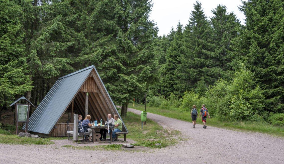 Picknick am Rennsteig zwischen Oberhof und Allzunah © Gregor Lengler / Thüringer Tourismus GmbH