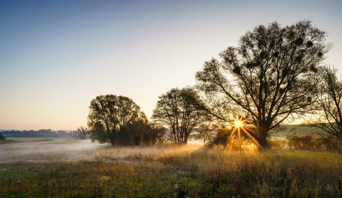 Das wird ein schöner Tag heute – Morgendämmerung im Barnimer Land © TMB-Fotoarchiv / Yorck Maecke