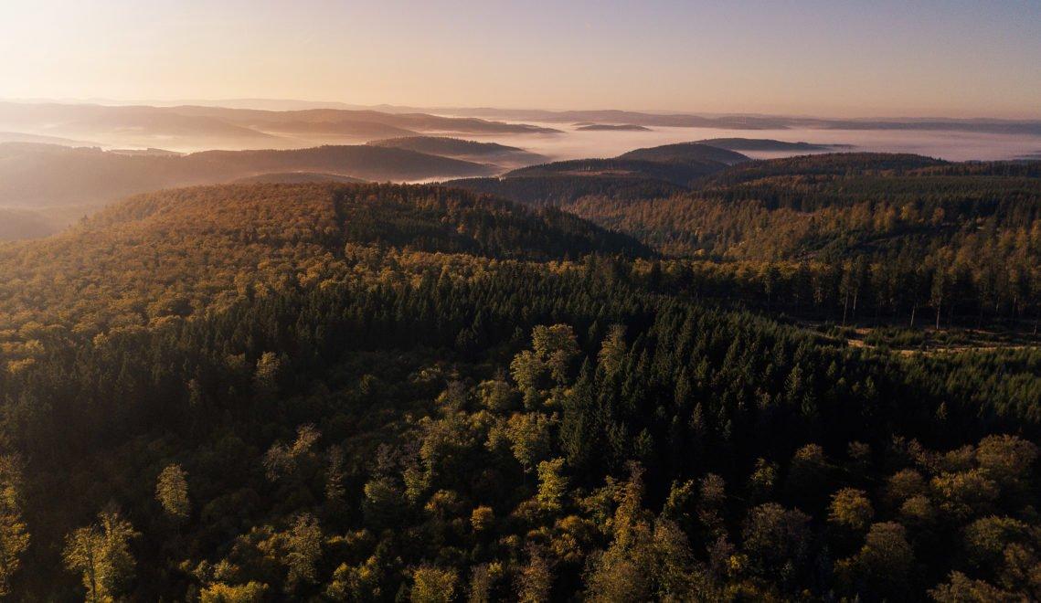 Waldparadies von oben. Der Rothaarsteig führt mitten hindurch © Tourismus NRW e.V.