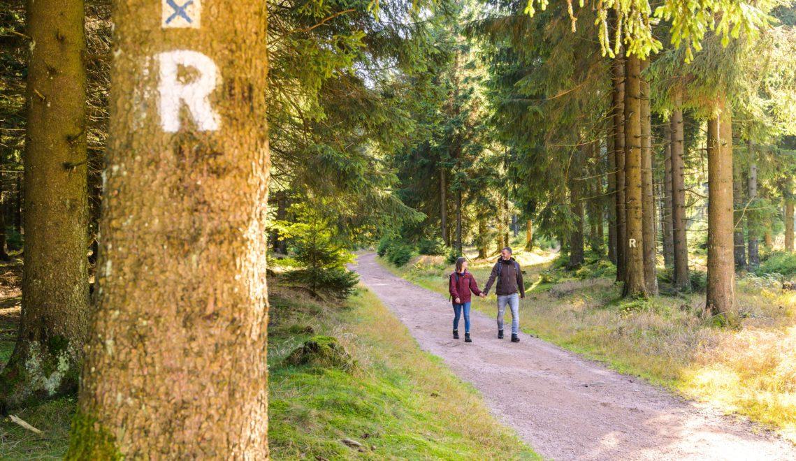 Mit dem weißen R unterwegs – der Rennsteig ist gut ausgeschildert © Christopher Schmid / Regionalverbund Thüringer Wald e.V.