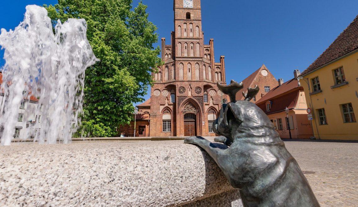 Ein gesichertes Revier Loriotscher Fabel-Waldmöpse: der Altstädtische Markt mit historischem Rathaus und Roland © TMB-Fotoarchiv/Steffen Lehmann