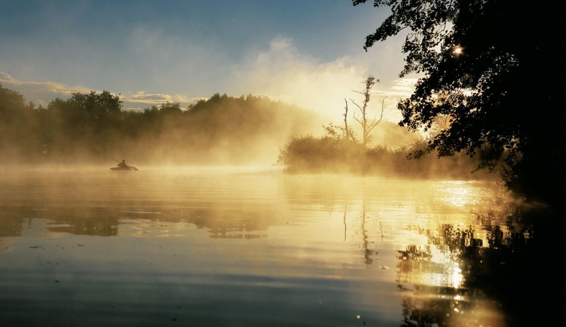Mystische Morgenstimmung über der Peene © TMV