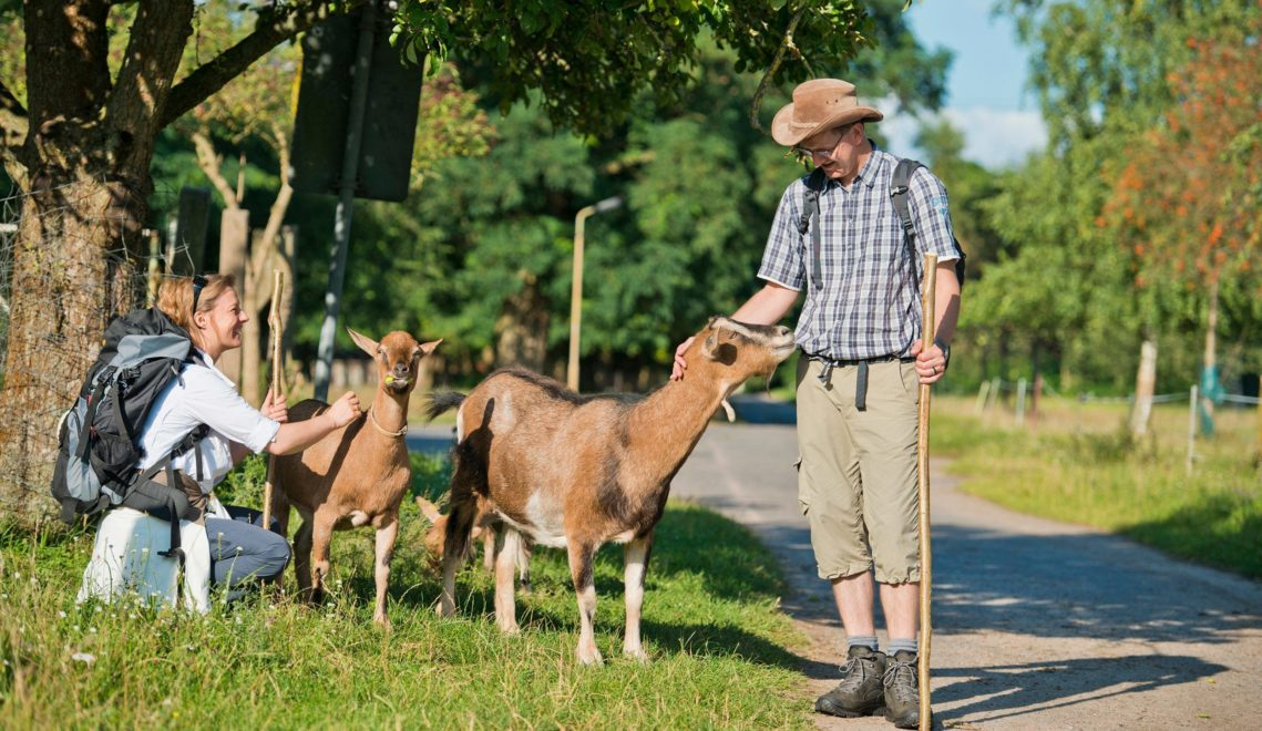 Tierische Begegnung am Wegesrand © Christin Drühl