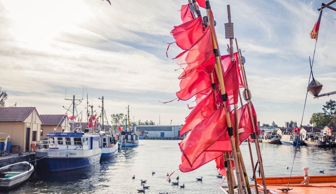 Vom Viereinhalb-Meter-Boot bis zum 17-Meter-Kutter – im Fischereihafen von Freest gibt es in Sachen Boote nichts, was es nicht gibt © TVV/Philipp Schulz