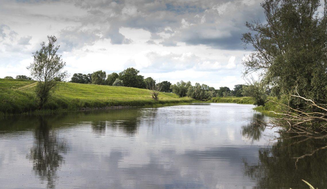 Auch Kanuten können die Elbe in Brandenburg erkunden © TMB-Fotoarchiv/Steffen Lehmann