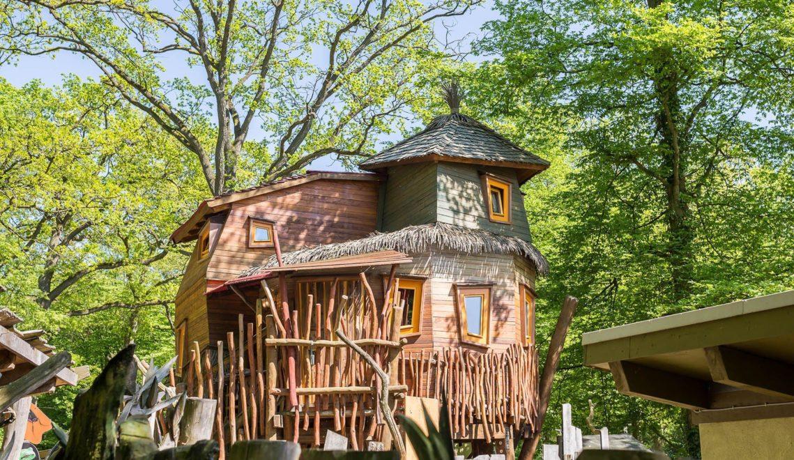 Außergewöhnlich übernachten lässt es sich im Baumhaus mitten im Zoo