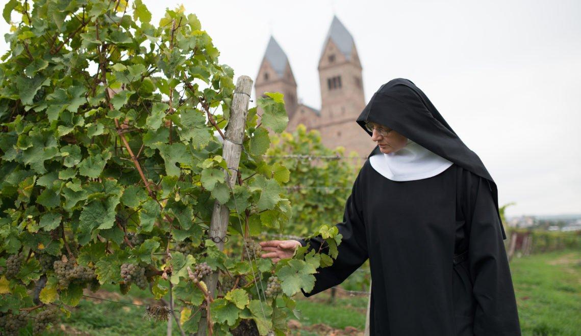 Noch heute kümmern sich die Ordensschwestern selbst um ihre Reben © HA Hessen Tourismus