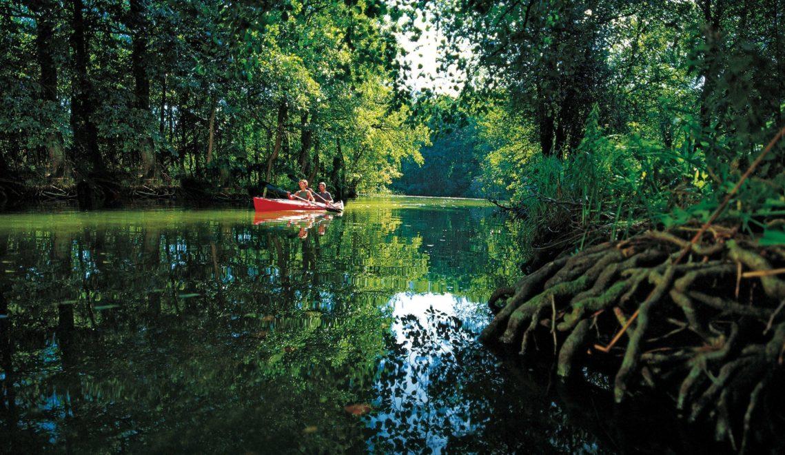 Mit dem Kanu durch den Dschungel © TMV