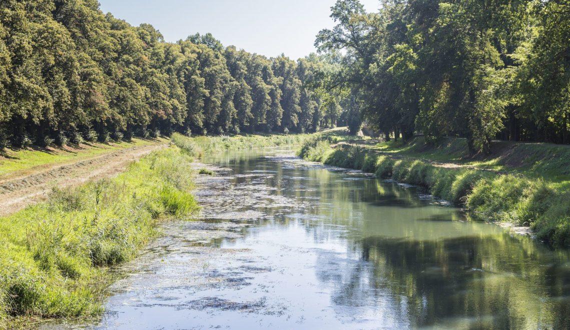 Die Flusslandschaft des Kleinen Spreewalds lässt sich hervorragend mit dem Fahrrad, zu Fuß oder mit dem Kanu erkunden © TMB-Fotoarchiv/Steffen Lehmann