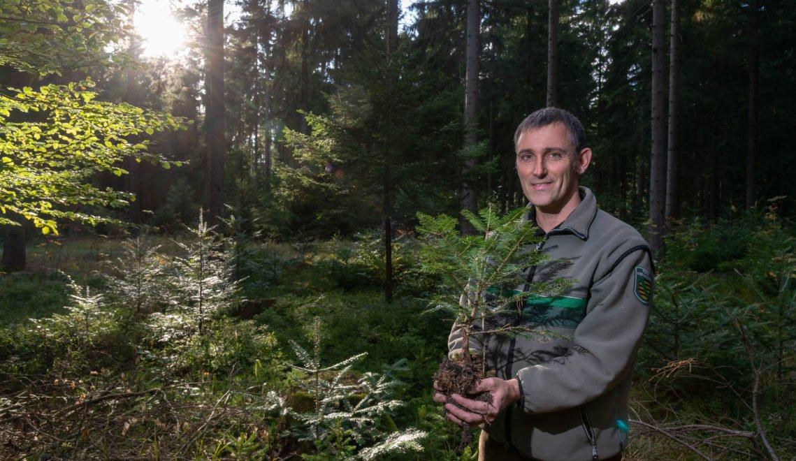 Neben dem kulturellen Angebot des Dorfes, ist es für Dirk Schönfelder vor allem die Ruhe des Waldes, die ihn an den Ort bindet © Andreas Krone