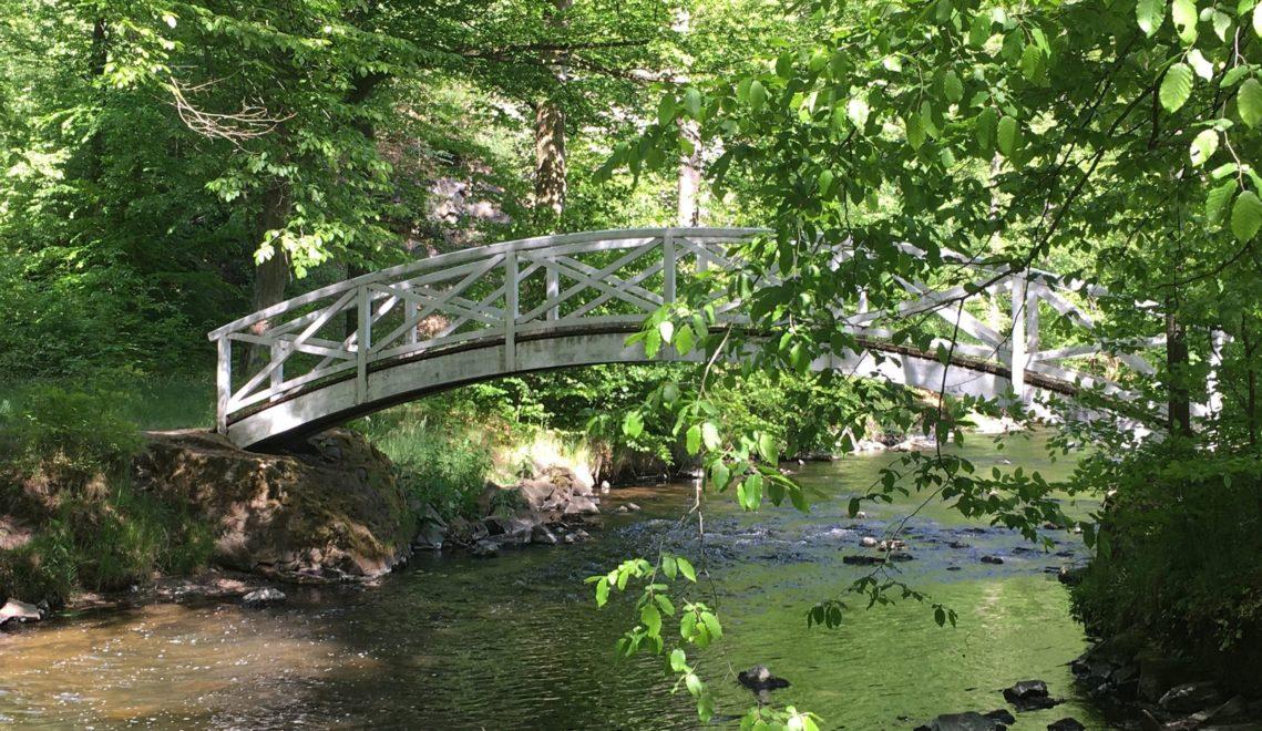 Mehrere Brücken überspannen die Röder im Seifersdorfer Tal © Nadine Wojcik