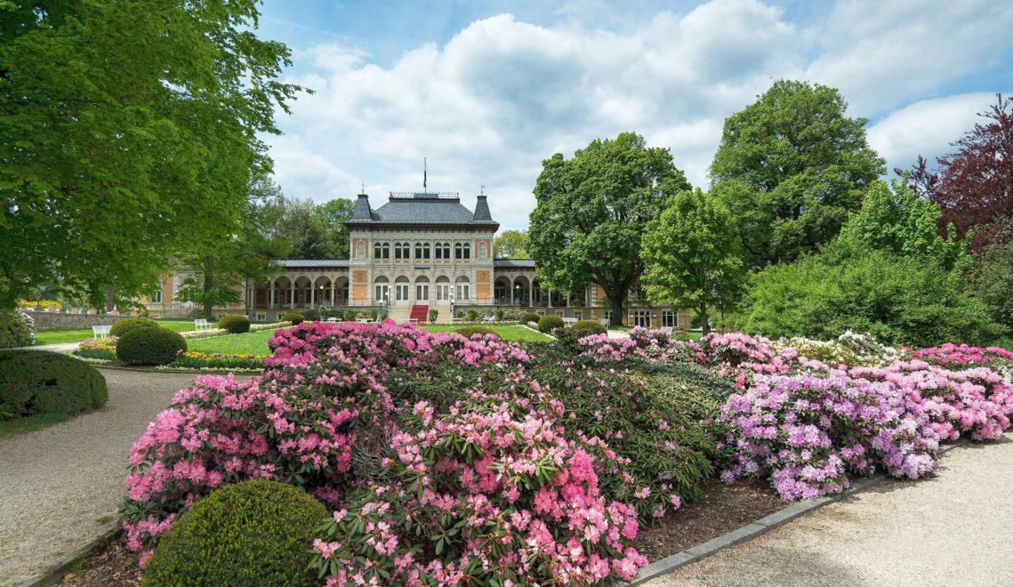 Ein Farbenfest: die Rhododendronblüte im Kurpark Bad Elster © TVV/T. Peisker