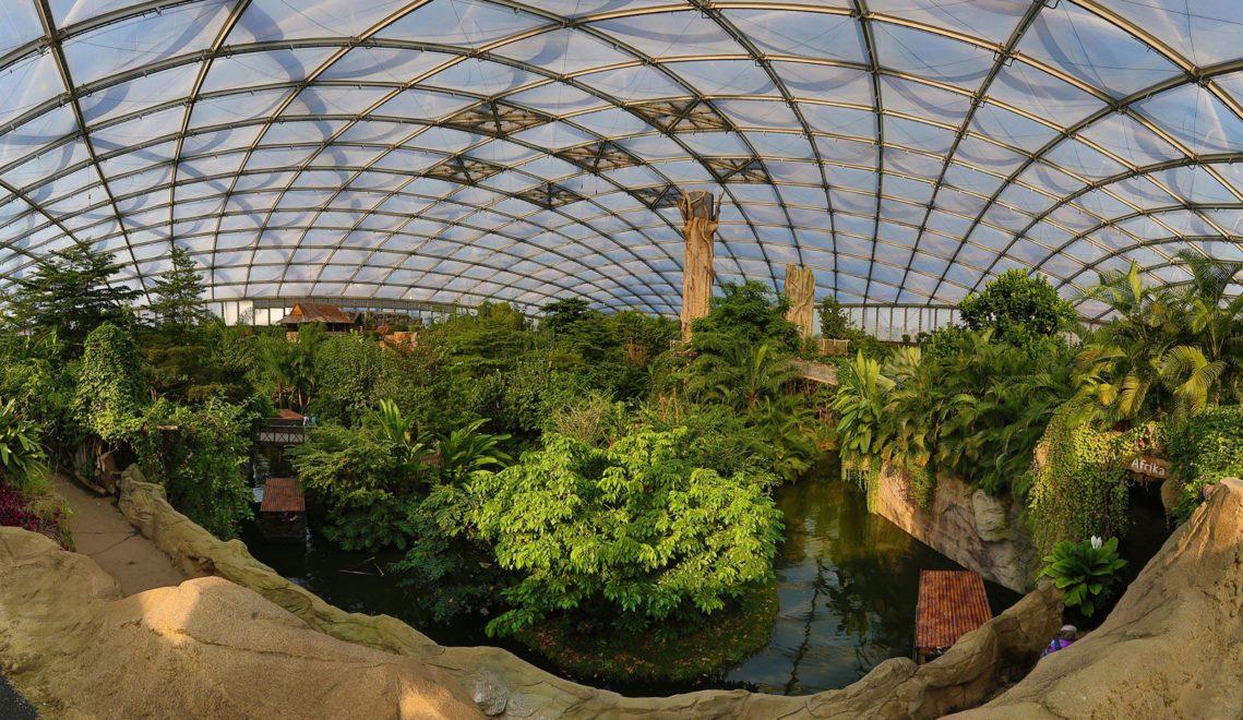 Im Gondwanaland des Leipziger Zoos herrscht tropisches Klima © Silvio Bürger