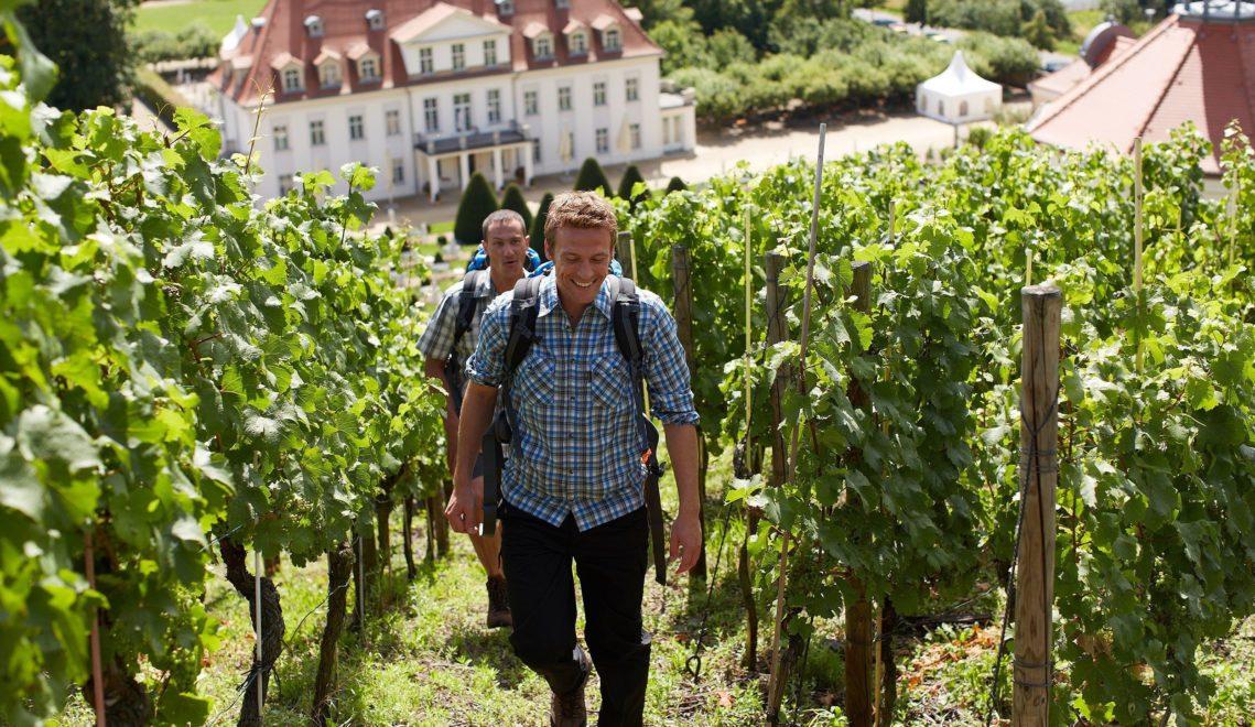 Wandern in den Weinhängen bei Schloss Wackerbarth © Intention Marcus Gloger