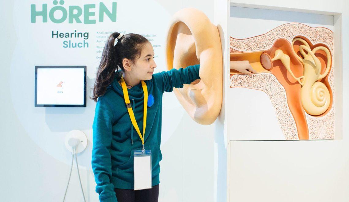 Wie ist unser Ohr eigentlich aufgebaut? Anschauliche Erklärungen finden Interessierte im Deutschen Hygiene-Museum © Oliver Killig