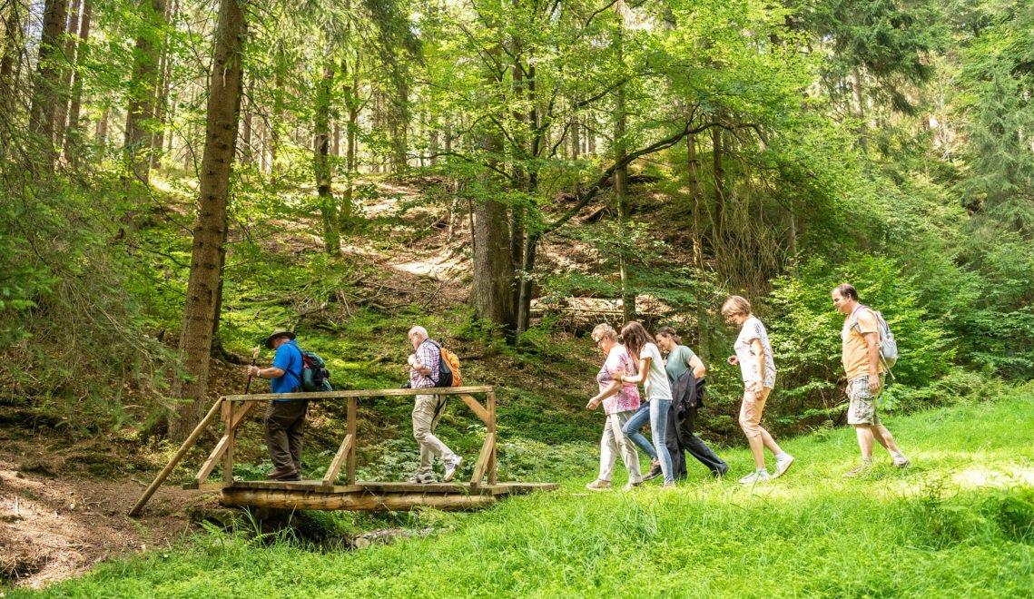In eineinhalb Tagen könnt ihr einmal um das Biosphärenreservat Thüringer Wald wandern © Dominik Ketz