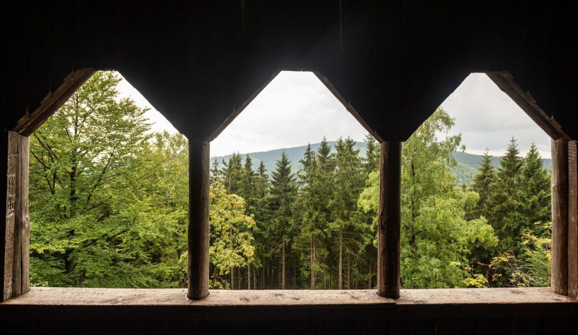 Der Wald lebt in Thüringen: Blick vom Aussichtspunkt Finsterbergblick ins Freibachtal und nach Stützerbach © Dominik Ketz