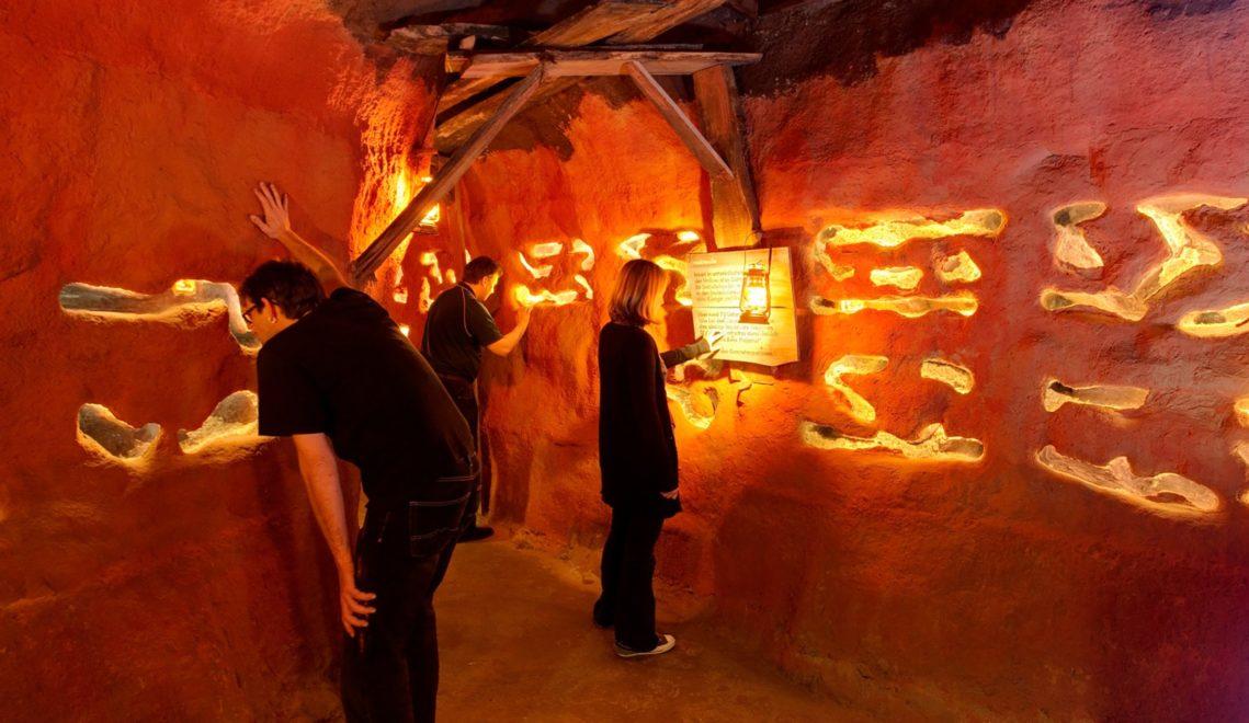 Auch unter der Erde leben Tiere! Zu beobachten in Deutschlands einzigem unterirdischen Zoo ©Zoo Osnabrück / Stephan Schute