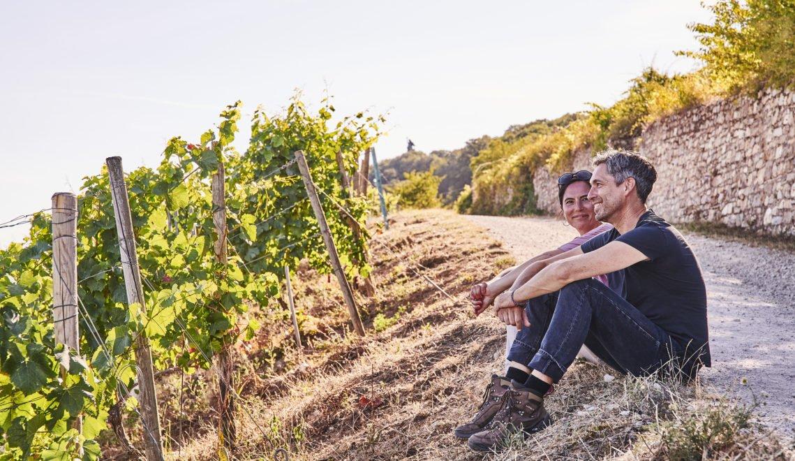Einfach schön – der Rheingau gilt nicht umsonst als das das Kronjuwel unter den deutschen Weintourismusregionen