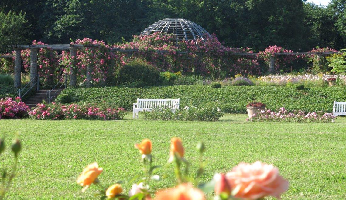 Das Herzstück des Parks, das Rosarium, wurde etwa um 1900 angelegt
