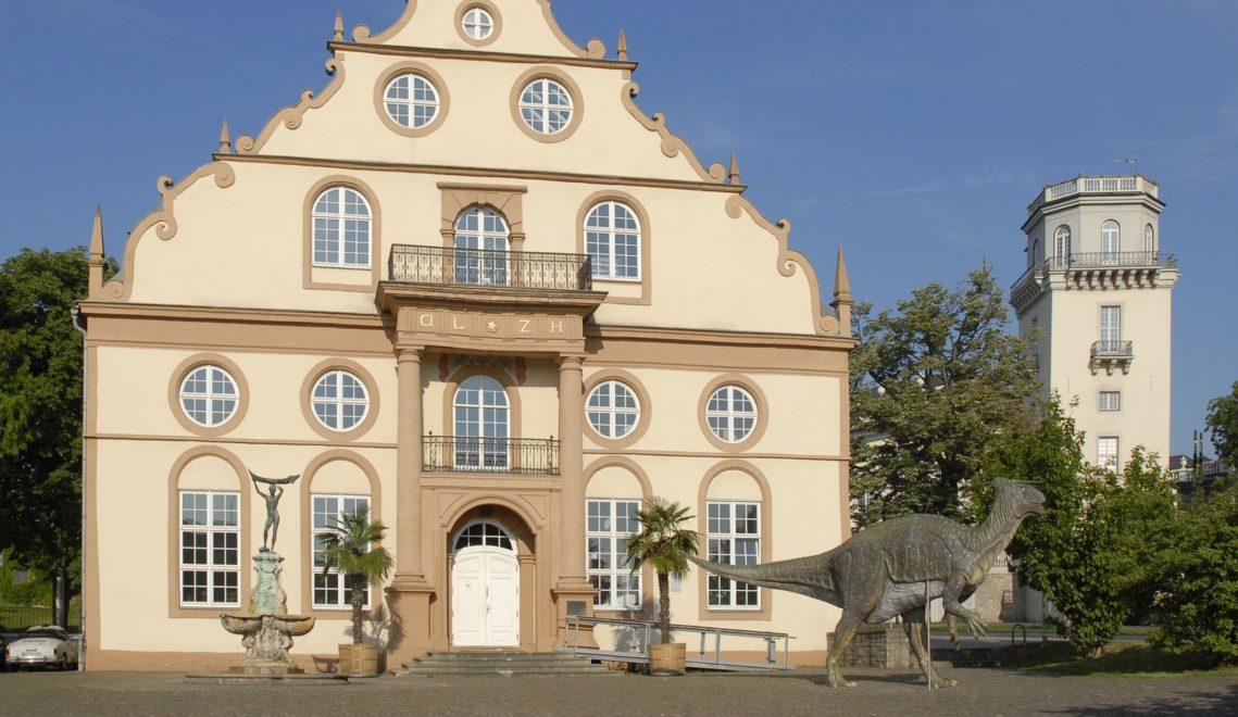 Das Naturkundemuseum ist mit seiner langen Geschichte fest in Kassel verankert