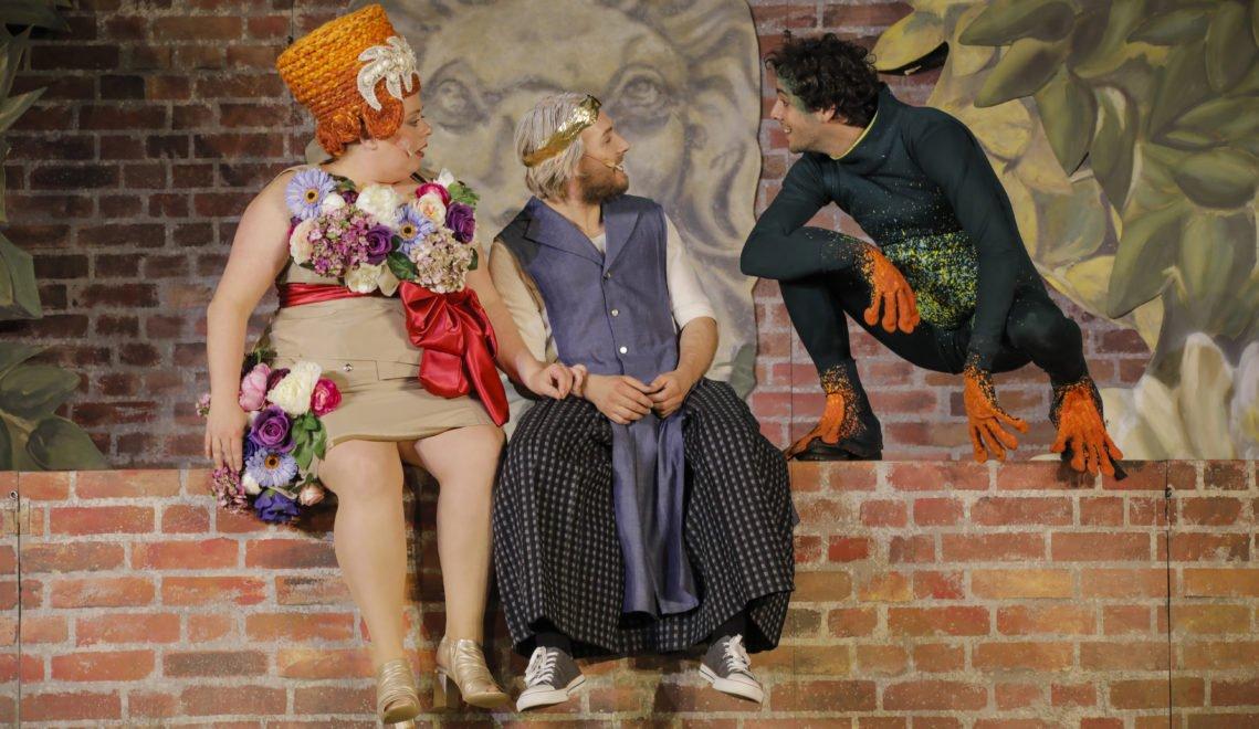 Jedes Jahr wird bei den Hanauer Brüder Grimm Festspielen ein anderes grimmsches Märchen aufgeführt, hier der Froschkönig