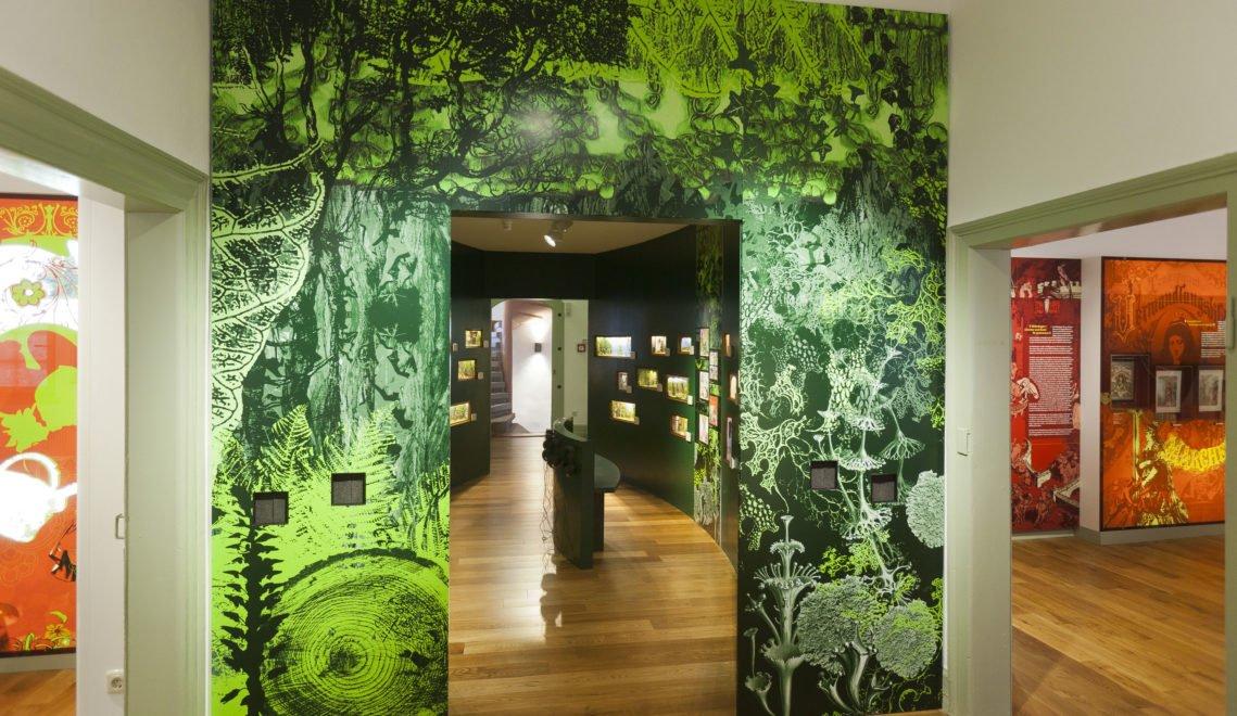 Im Märchenwald im Brüder-Grimm-Haus könnt ihr die Geschichten mit allen Sinnen erleben
