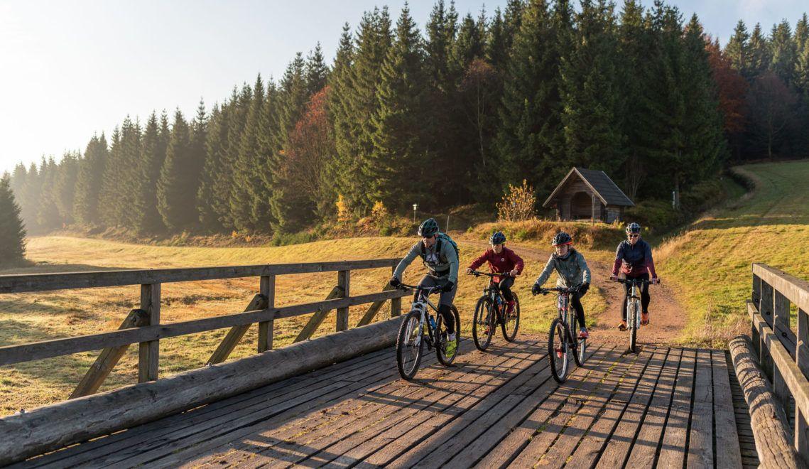 Auf der BLOCKLINE lässt sich die unberührte Natur des Osterzgebirges erkunden ©TVE/Meyer