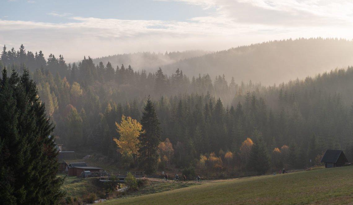 Hochmoore, dichte Wälder und klare Bachläufe prägen das Erzgebirge © TVE/Felix Meyer